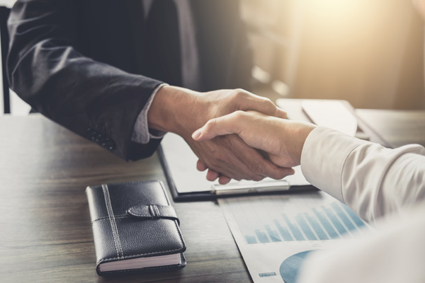 Professional adult site broker shaking hands with client